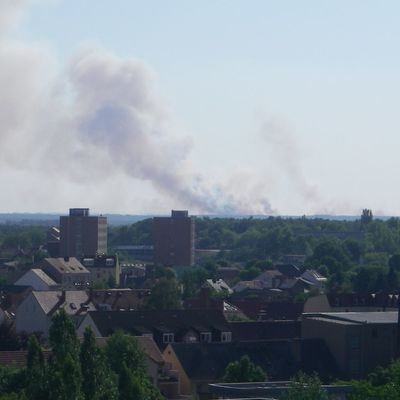 Waldbrandwarnstufen Brandenburg